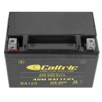 Caltric - Caltric Battery BA123-2 - Image 3